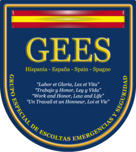 gees-spain-inteligencia-liderazgo